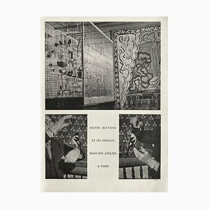 Volière Henri Matisses, Brassaï, Revue Verve