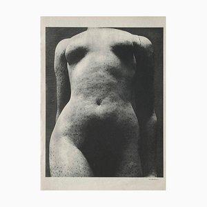 Aristide Maillol's Women by Erwin Blumenfeld for Revue Verve