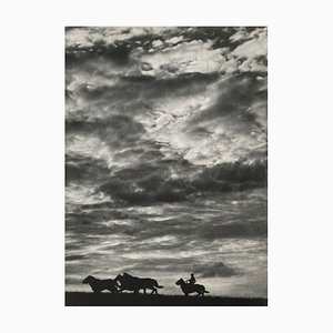 Wild Horses by Erwing Galloway