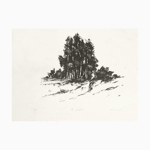 Poplars by Jacques Deperthes