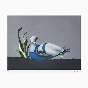 L'oiseau bleu par Jean Paul Donadini