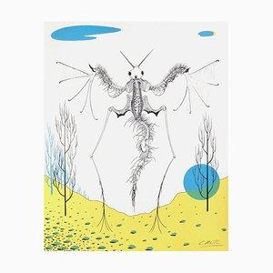 Histoire naturelle: l'Angelot par Félix Labisse