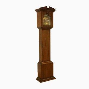 Horloge Grand-Père Tempus Fugit Vintage en Bois Dur