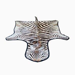 Tappeto grande di pelle di zebra, Francia, anni '70