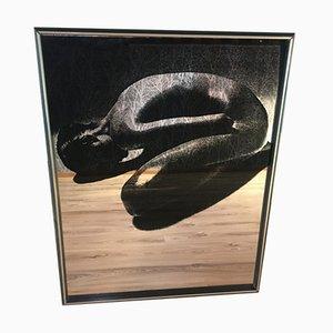 Specchio con immagine grande, anni '70