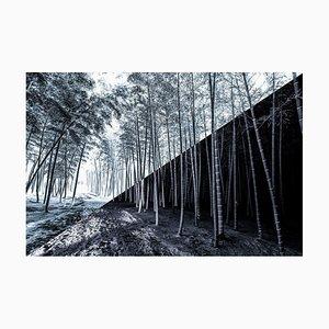 Takeo Hirose, Yin-Yang No.3, 2020