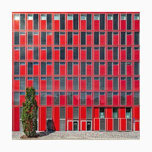Paul Brouns, Lost in Red, 2018