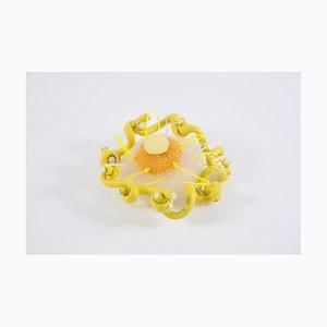 Diana Wolzak, Curly Yellow, 2020