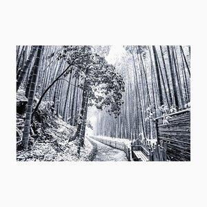 Japanese Winter Wonderland nr. 1, 2019