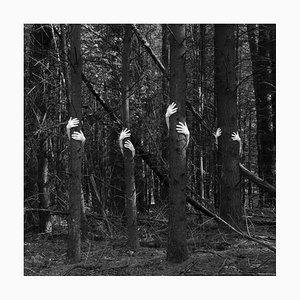 Humain // Nature #2, 2020