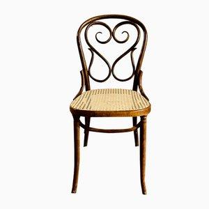 Chaises de Restaurant de Thonet, Début 1900s