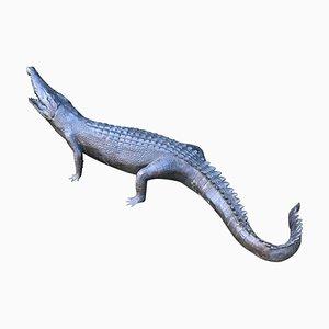 Grand Crocodile en Bronze, 20ème Siècle