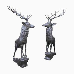 Cerfs Taille Réelle en Bronze sur Rochers, 20ème Siècle, Set de 2