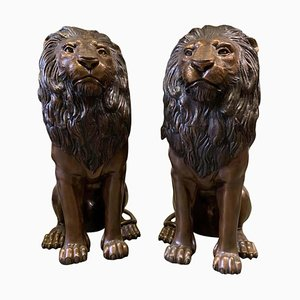 Cast Bronze Sitting Lions, 20th Century, Set of 2