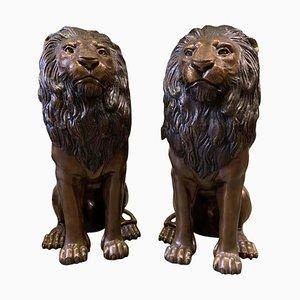 Lions Assis en Bronze Coulé, 20ème Siècle, Set de 2