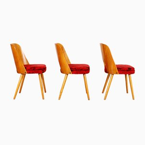 Dining Chairs by Oswald Haerdtl for TON, Set of 3