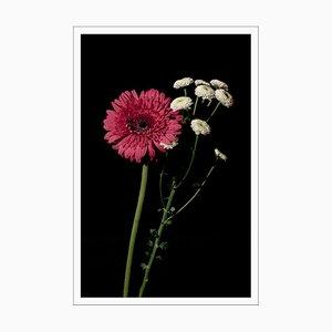 Rosa und weiße zarte Blumen, Giclée Druck, 2021