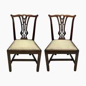 Englische Mahagoni Beistellstühle, 2er Set