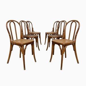 Chaises de Bistrot en Bois avec Cannage de Thonet, Set de 6