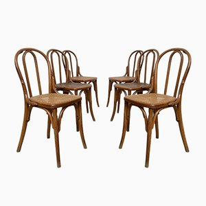 Wooden Bistro Chairs with Caning from Thonet, Set of 6