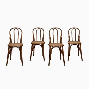 Wood and Cane Bistro Chairs by Michael Thonet for Thonet, 1930s, Set of 4