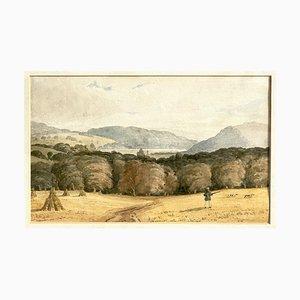 Jagd Waldhunde, 19. Jahrhundert, Aquarell