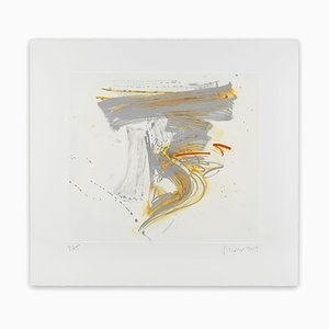 Eclat, Abstract Print, 2013