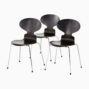 Modell 3101 Stuhl von Arne Jacobsen für Fritz Hansen