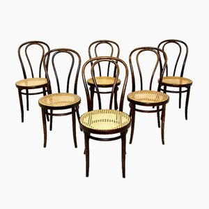 Chairs from ZPM Radomsko, Poland, 1930s, Set of 6