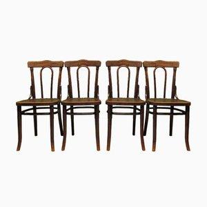 Antike polnische Bistrostühle aus Bugholz mit gepressten Sitzen im Thonet Stil, 4er Set