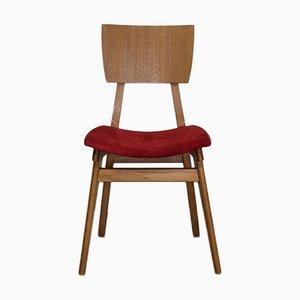 Chair in Solid Beech and Oak Veneer, France, 1950s