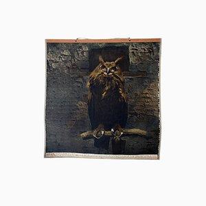 Austrian Wall Chart Eagle Owl