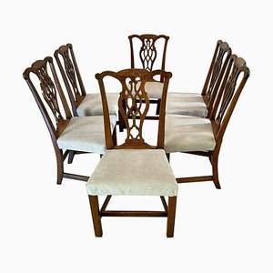 Antique George III Oak Chippendale Dining Chairs, Set of 6