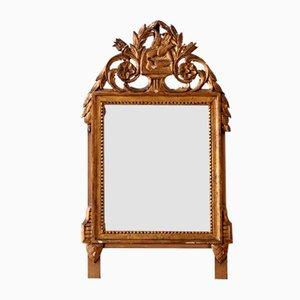 Louis XVI Spiegel mit geschnitztem & vergoldetem Rahmen