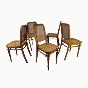 Schilfrohr Stühle von Michael Thonet für Thonet, 5er Set