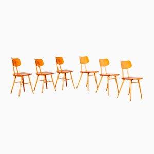 Esszimmerstühle von TON, 1960er, 6er Set