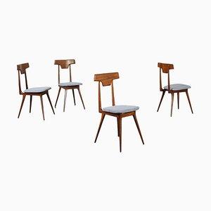 Beech, Mahogany, Fabric & Foam Chairs, Italy, 1950s or 1960s, Set of 4