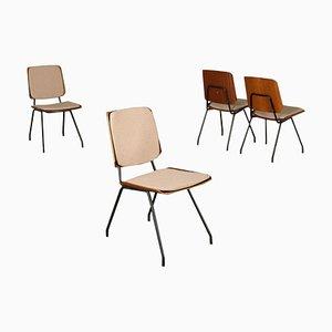 Schichtholz Stühle von Osvaldo Borsani für Tecno, 1950er oder 1960er, 4er Set