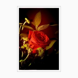 Rosa rossa in luce vintage, Stampa Giclée in edizione limitata, Natura morta verticale, 2021