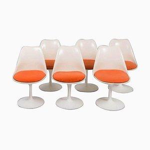Tulip Stühle von Eero Saarinen für Knoll, 6er Set