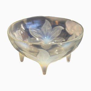 Opalescent Bowl by René Lalique