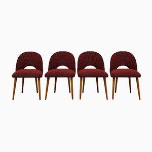 Chairs by Oswald Haerdtl, Set of 4