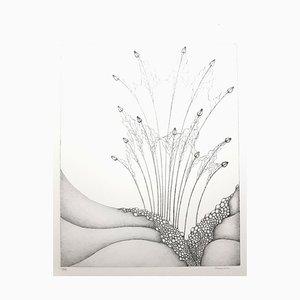 Gochka Charewicz, Herbarium, Original Lithograph