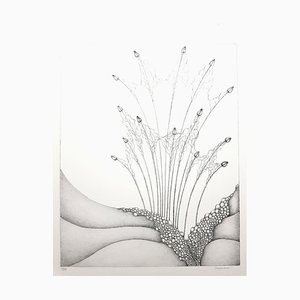 Gochka Charewicz, Herbarium, Original Lithographie
