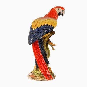 Italian Ceramic Parrot, 1970s