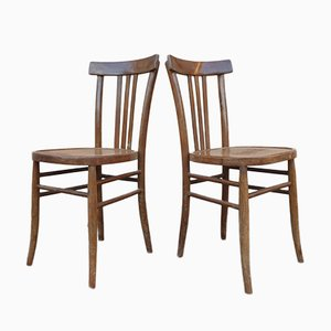 Bohemian Dining Chairs, Set of 2