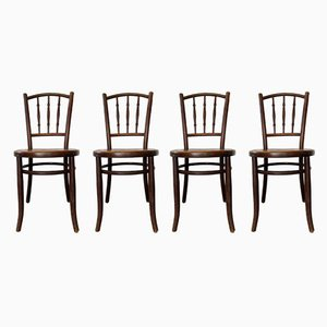 Antique Bullwood Chairs from Fischel, Set of 4