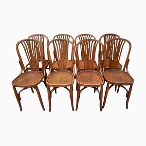 Esszimmerstühle, 1920er, 8er Set
