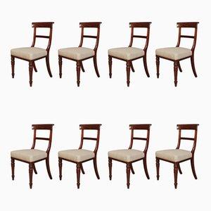 William IV Esszimmerstühle aus kubanischem Mahagoni, 8er Set