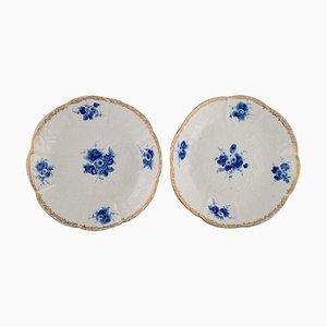 Antike tiefe Teller mit Blattwerk in Relief und handbemalten Blumen von Meissen, 2er Set